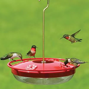 glass bird feeders