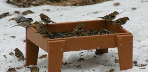 ground bird feeders