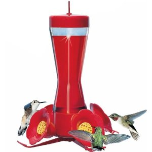 humming bird feeder, bird feeders, unique bird feeders